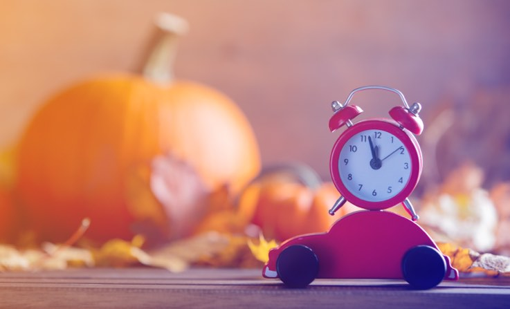 holiday visitation schedule ca law